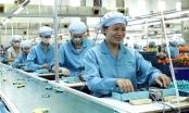 Công nghiệp hỗ trợ tại Việt Nam: Thủ tục vay vốn còn nhiều bất cập