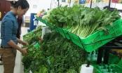 Tỉnh Vĩnh Long đồng hành cùng thực phẩm sạch