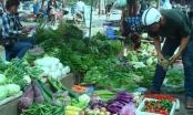 Hơn 5% lượng rau bán trên thị trường nhiễm chất cấm