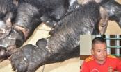 Quảng Ninh: Bắt giữ đối tượng vận chuyển lô hàng cấm nghi chân, tay gấu