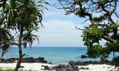 Hành trình du lịch khám phá phần 5: Tận hưởng chuyến du lịch lý thú tại đảo Lý Sơn