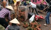 Bắc Giang: Bộ đội, CSGT giúp dân khuân vác vải thiều