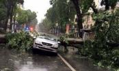 7 người chết và mất tích sau cơn bão số 1