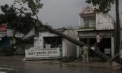 TP HCM: Giông lốc cuốn bay nhiều mái nhà, cây xanh