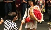 Tim cầu hôn Trương Quỳnh Anh trong rạp chiếu phim sau 5 năm gắn bó