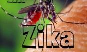 Cảnh báo: Thái Lan, Singapore phát hiện thêm nhiều sản phụ nhiễm Zika