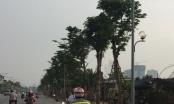 Hà Nội: Hàng trăm đèn đường sáng giữa ban ngày