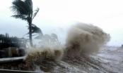 Dự báo thời tiết ngày 8/10: Tin mới nhất về cơn bão số 6