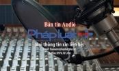 Bản tin Audio Thời sự Pháp luật Plus ngày 8/10: Đề xuất làm hồ điều hòa để chống ngập Tân Sơn Nhất