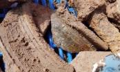 Thăm dò khảo cổ nơi nghi có dấu tích lăng mộ vua Quang Trung: Phát hiện nhiều cổ vật