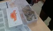 Khách hàng ở Việt Nam khui hộp iPhone 6s nguyên Seal nhận được cục đá