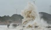 Tin mới về cơn bão Sarika trên Biển Đông