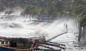 Dự báo thời tiết hôm nay 21/10: Bão số 8 có gió giật cấp 16 đổ bộ biển Đông