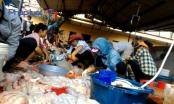 Phóng viên bị hành hung ở lò mổ: Cơ quan chức năng huyện Thanh Oai nói gì?