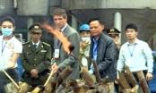 Chính thức tiêu huỷ 2 tấn ngà voi tại Sóc Sơn, Hà Nội