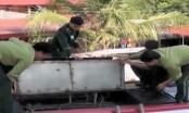 Biên phòng Thanh Hóa bắt đối tượng buôn bán trái phép 315kg pháo nổ