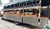 Thanh Hóa: CSGT bắt giữ 6,4 mét khối gỗ quý vận chuyển trái phép