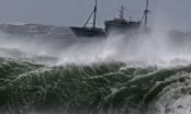 Dự báo thời tiết ngày 11/12: Xuất hiện áp thấp trên biển Đông