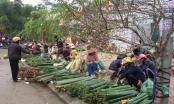 Dạo quanh một vòng chợ tết quê ở miền tây xứ Nghệ