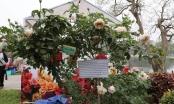 Bản tin Facebook nóng nhất tuần qua: Lễ hội hoa hồng Bulgaria - Chất lượng chưa tương xứng với giá vé