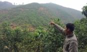 Kỳ 1 - Phú Thọ: Tòa án nhân dân huyện Thanh Sơn bị công dân tố vi phạm Luật Tố tụng