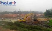 Vĩnh Phúc: Người dân cắt lúa non, nhường ruộng cho doanh nghiệp làm dự án