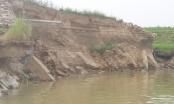 """Kỳ 4 - Sạt kè bờ sông """"tiền tỷ"""" ở Vĩnh Phúc: Trách nhiệm thuộc về ai?"""