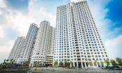 Bản tin Bất động sản Plus: Dự án Capitaland Hoàng Thành, chủ đầu tư bất chấp vi phạm?