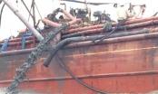Đề nghị dừng hoạt động đổ bùn thải xuống biển giáp ranh Nghệ An và Thanh Hóa