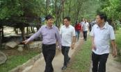Đà Nẵng: Chấn chỉnh hoạt động du lịch trái phép tại quận Liên Chiểu
