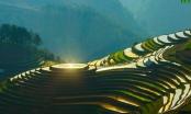 Flycam: Mù Căng Chải mùa nước đổ