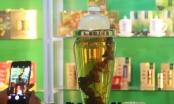 Festival Quảng Nam: Bình rượu Sâm Ngọc Linh 10 năm tuổi có giá 200 triệu đồng!