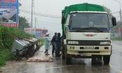 Tuyên Quang: Hãi hùng xác động vật và rác thải trên đại lộ Tân Trào