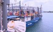 Thời sự 9h ngày 5/7/2017: Thủ tướng yêu cầu điều tra việc đóng tàu kém chất lượng