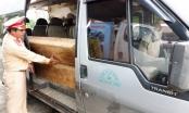 Quảng Nam: Kiểm tra trên đường mòn HCM, phát hiện xe chở gỗ lậu