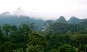 Xuân Sơn - Vườn thuốc nam khổng lồ cuối dãy Hoàng Liên Sơn