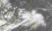 Dự báo thời tiết ngày 28/7: Biển Đông tiếp tục xuất hiện áp thấp nhiệt đới