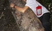 """Phát hiện bom """"khủng"""" trong rừng, người đàn ông lao vào ôm rồi chụp ảnh"""