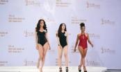 Khép lại vòng sơ tuyển, sơ khảo Hoa hậu Hoàn vũ, 70 gương mặt xuất sắc nhất đã chính thức lộ diện
