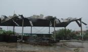 Bão số 10 ở Quảng Trị: Nước lũ chia cắt nhiều vùng