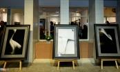 Xôn xao triển lãm ảnh khỏa thân đầu tiên tại Việt Nam