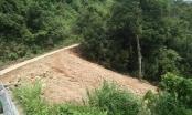 Vụ đổ đất thải xâm lấn Vườn Quốc gia Tam Đảo: 3 tháng không tìm ra thủ phạm (!?)