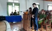 Lâm Đồng: Tử hình đối tượng giết người chôn xác phi tang trong rẫy cà phê
