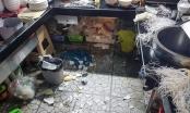 Lâm Đồng: Xử lý nhóm đối tượng hành hung chủ quán ăn vì cho rằng ưu tiên khách nước ngoài