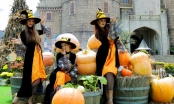 Rực rỡ sắc màu đêm hội Halloween tại Sun World Ba Na Hills