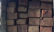 Thừa Thiên Huế: Phát hiện nhiều khối gỗ Hương không rõ nguồn gốc trên xe khách