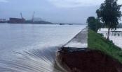 Nam Định: Nhiều đoạn đê xung yếu nằm trong vòng nguy hiểm