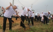 Lãnh đạo Đà Nẵng xuống đường cùng người dân làm vệ sinh trước thềm APEC