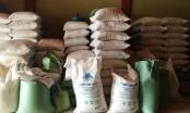 Yên Bái: Khởi tố hiệu trưởng và hiệu phó bán 6 tấn gạo của học sinh