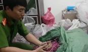 Khánh Hòa: Cất giữ số lượng lớn pháo trên trần nhà suốt 27 năm